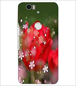 PrintDhaba Flowers D-2279 Back Case Cover for HUAWEI NEXUS 6P (Multi-Coloured)