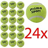 24 X SPORT TENNIS PLAY CRICKET BALL HUNDESPIELZEUG, OUTDOOR FREIZEIT- FUN NEU