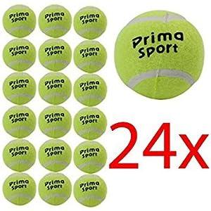 24 X Tennisbälle, Sport, Spielball, Hundeball, Outdoor-Spaß, Strandball, Freizeit (Verpackung kann variieren)