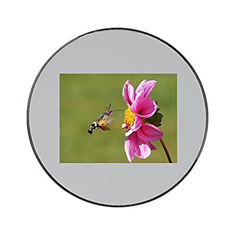 Metal round fridge magnet with Hummingbird Hawk Moth, Butterfly