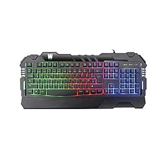 WASDkeys K200 Gaming Tastatur Pro Lightning Keyboard (Beleuchtete Tasten, LED RGB Rainbow Regenbogen Beleuchtung, 12 Hotkeys, Anti Ghosting, USB, QWERTZ Deutsches Layout, Ergonomisch) schwarz