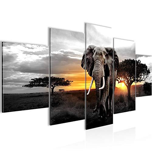 Bilder Afrika Elefant Wandbild 200 x 100 cm Vlies - Leinwand Bild XXL Format Wandbilder Wohnzimmer Wohnung Deko Kunstdrucke Gelb Grau 5 Teilig - MADE IN GERMANY - Fertig zum Aufhängen 001251c -