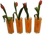 8000 Stück / 20Liter Wasser Kugeln Gel Bälle CHRISTAL ERDE CHRYSTAL Perlen Vasen Dekoration 11-15mm Durchmesser / 200Gramm – Pflanzen Blumen Wasserspender Raumbefeuchter KRISTALL (Transparent) - 7
