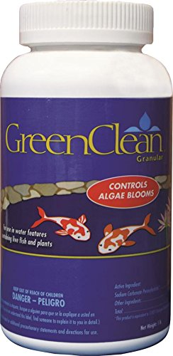 green-clean-granular-algaecide