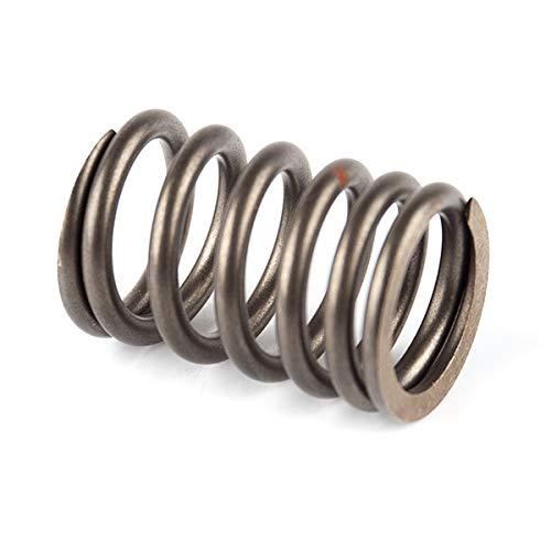 Engine Parts Car Engine Valve Springs