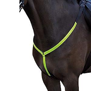Horse Guard Reflex Vorderzeug für Pferde
