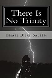 There Is No Trinity (When You Read This Book You Will Know) (Volume 3) by I. D. Campbell (2013-03-30)