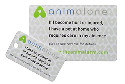 Pet Home Alone Card