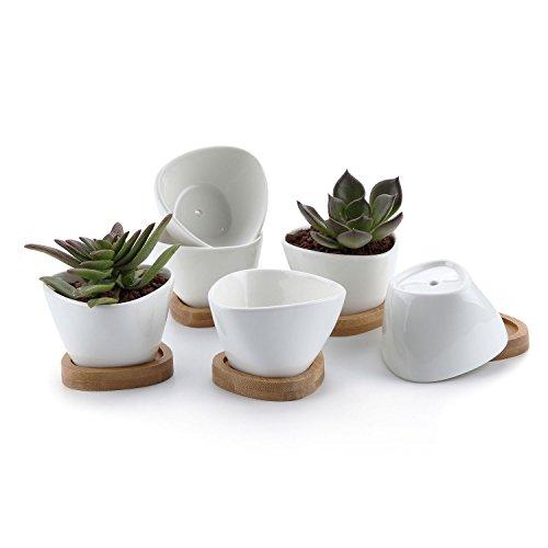 t4u vaso per pianta grassa vaso di piante con vassoio di bambù bianco 8cm ceramica triangolo set di 6, fioriere di cactus contenitori vasi di fiori decorativo desktop davanzale regalo di natale