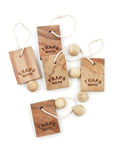 secreto-de-la-abuela-czmk1611-1-antipolillas-de-household-essentials-old-cinnamomum-camphora-raiz-al