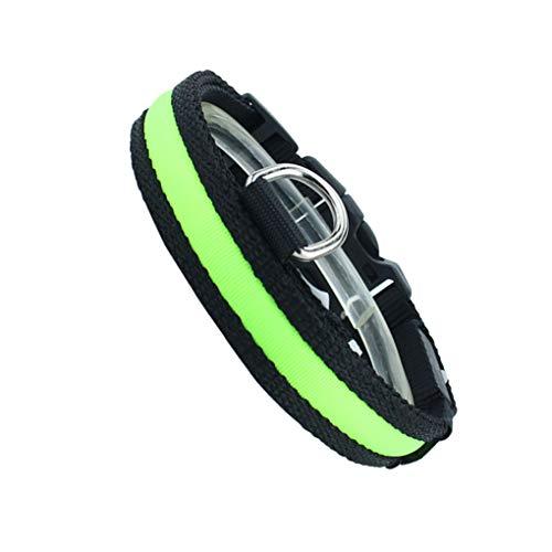 Censhaorme Hund Katze Nylon Reflektierende USB Charge Luminous Halsbänder Glow-Blitzen leuchten LED-Welpen-Hundehalsband