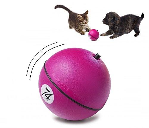 D&D Adventure Magic Ball - Gioco elettronico per cani e gatti, per un divertimento assicurato