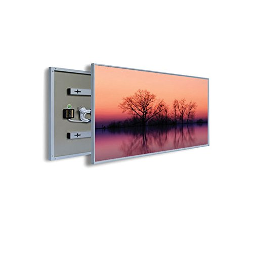 41g5D3 R10L. SS500  - Cold Fighting Top-Level 595 * 1005mm 600W Image Far Infrared Panel Heater Electric Wall Heater