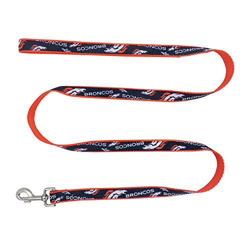 nfl-denver-broncos-team-pet-ribbon-leash