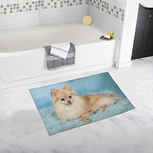 YXUAOQ Pomeranian On Carpet Custom rutschfeste Badematte Teppich Bad Fußmatte Boden Teppich für Badezimmer 20 X 32 Zoll -