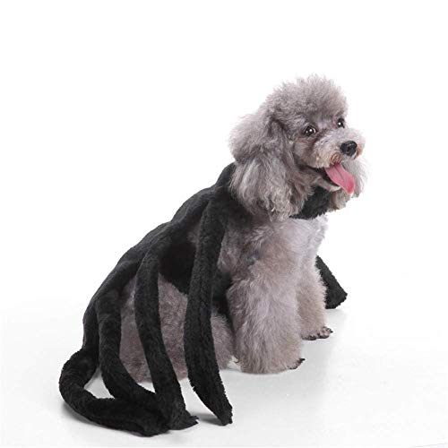 , Mode Halloween Pet Spider Harness Kostüm Halloween Dekoration,b,S ()