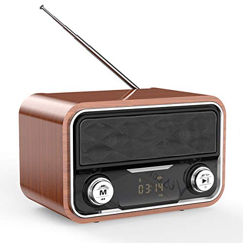 Radio Altavoz Bluetooth Inalámbrico, ERAY Retro Altavoz Portátil, Dual 6W, FM Radio, LED Pantalla, 8 Horas de reproducción, Diseño Clásico, Soporta TF Tarjeta, 3.5mm AUX, Batería de 2000mAh