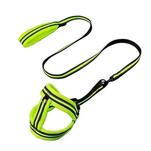 CUTEPET Guinzaglio, Guinzaglio Doppio Tessitura di Nylon Pet, Medie e Grandi Dimensioni Dog, for la Formazione (Color : Green, Size : S)