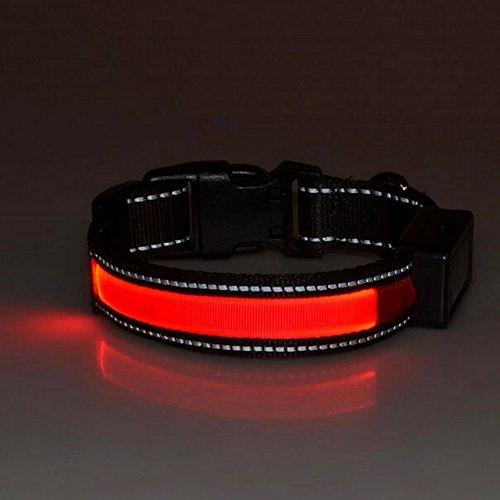 LaiXin Collar para Perros con Luz