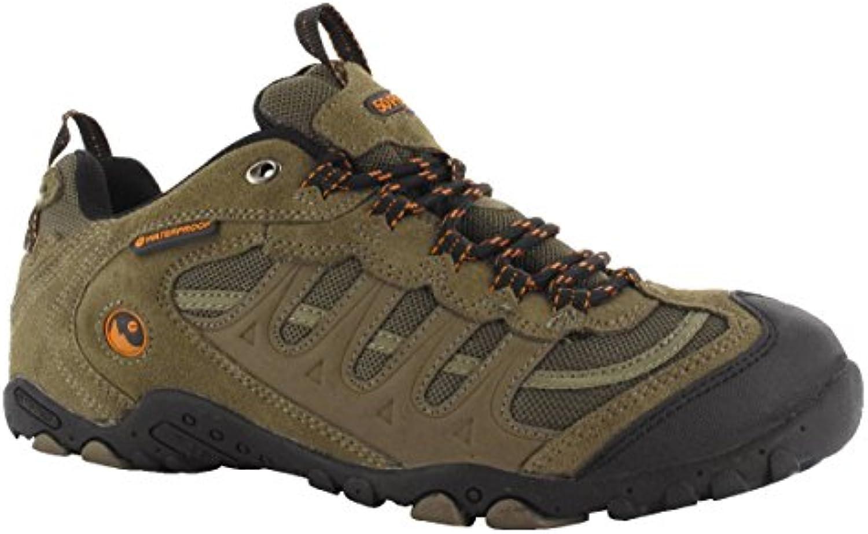 Schuh die Sport Trekking Herren crnon Goretex Brown 46
