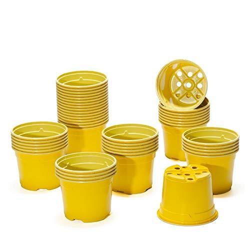 Pot de culture DUO 10.5 cm jaune (x 50)