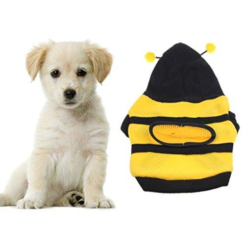 Bee Hund Bumble Kostüme (Nette Haustier Kleidung, Hmeng Bumble Bee Schöne Flügel Hund Pullover Warm Samt Haustier Katze Kapuzenpullis Sweatshirt Mantel für Herbst Winter (8,)