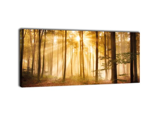 Leinwandbild Panorama Nr. 320 Wald am Morgen 100x40cm, Keilrahmenbild, Bild auf Leinwand, Dunst...