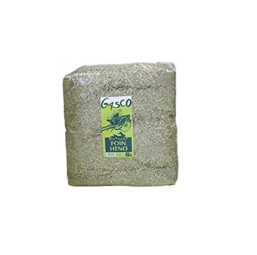 Gasco Foin Naturel alimentation pour Rongeurs 4 kg