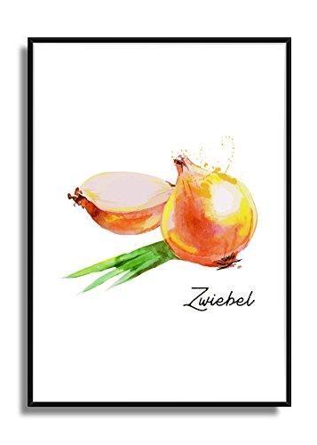 Wandbild Kunstdruck Poster ZWIEBEL im A4 Format, moderne Bild Deko für die Küche