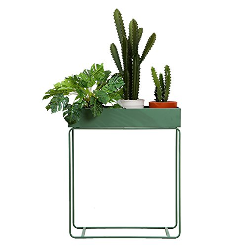 Pflanzenregale Metal Flower Rack Kreative Pflanze Stehen Flowerpot Display Stand Multifunktions...