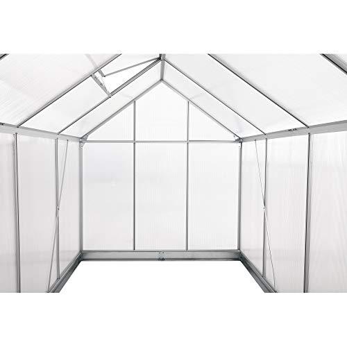 Zelsius Aluminium Gewächshaus für den Garten - 7