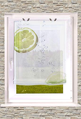 Raffrollo Bedruckt Limette 60/80 /100/120 x 140cm inkl. Easyfix Fensterhakenset