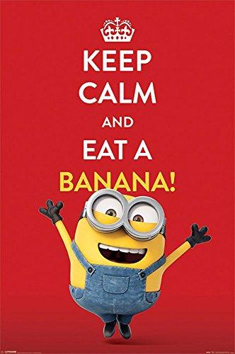 Minions Poster Keep Calm + accessoires de fixation 2 baguettes/noir