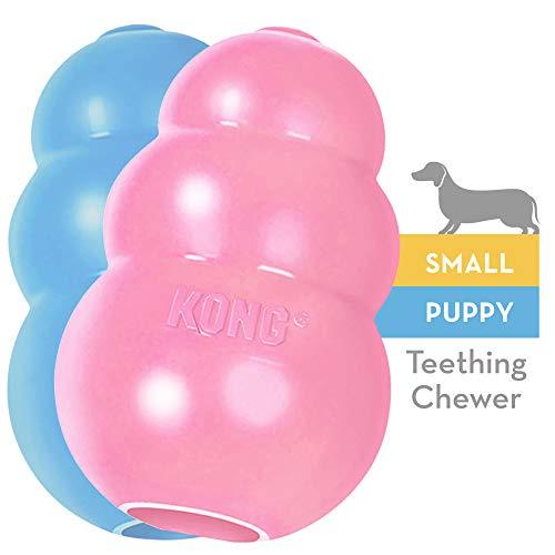 KONG Puppy Gioco goa naturale per dentizione Masticare e riportare Cuccioli S