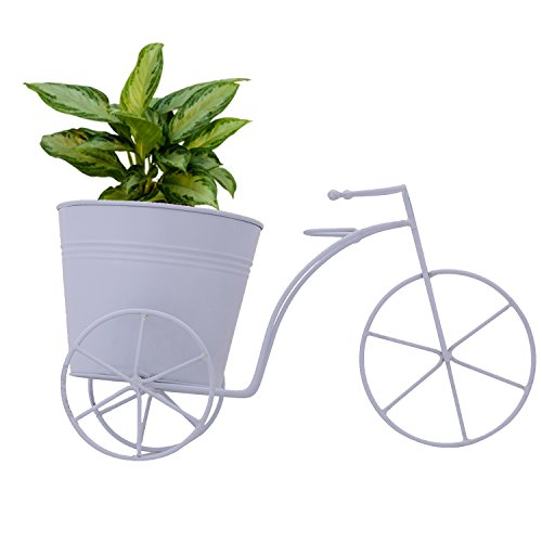 CINAGRO - Cycle Desk Planter, Plant Holder (Large Size)- White Color
