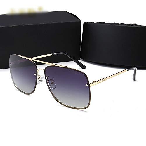 FANCYKIKI Fahren polarisierte Sonnenbrille, Metall ultraleichte Sonnenbrille für Herren Damen Vintage High-End Sonnenbrille für Reisen im Freien (Farbe : Gold frame/grey)