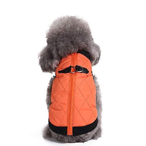 Orange Weiße Katze Kostüm Und - Amphia - Hund T-Shirt,Haustier Hund Reißverschluss Jacke Mantel Kleidung - Haustier Hund Katze Welpen Winter warme Kleidung Kostüm Jacke Mantel Kleid(Orange,S)