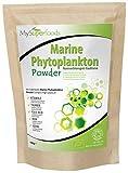 Marines Phytoplankton