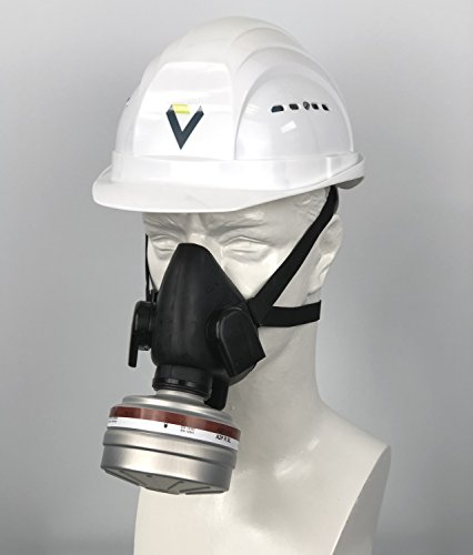 BartelsRieger Profi Atemschutz-Set: Lackieren, Streichen & Gartenarbeit / Premium Maske + A2P3 Filter