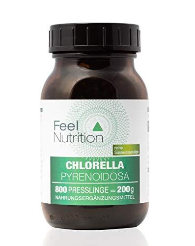 Chlorella Pyrenoidosa - IM GLAS, OHNE WEICHMACHER - Pro Pressling 250 mg Chlorella Pyrenoidosa Pulver mit Vitaminen und Spurenelementen - OHNE Magnesiumstearat - vegan & hochdosiert - 800 Presslinge