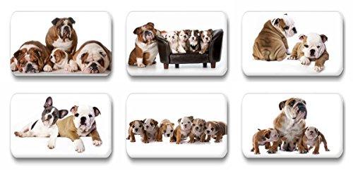 Merchandise for Fans Englische Bulldogge - 6 rechteckige Kühlschrankmagnete 7X 4,5 cm - 02 für Memoboard Pinnwand Magnettafel Whiteboard