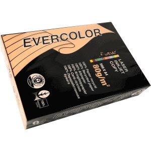 Clairefontaine 5 x Multifunktionspapier evercolor RC A4 210x297mm 80g/qm lachs VE=500 Blatt -
