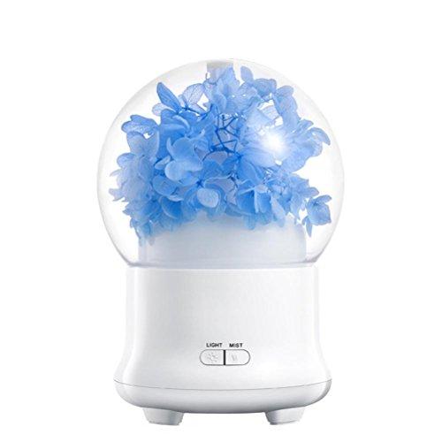 lume Led - Luft Luftbefeuchter öL Aroma Diffusor Duft - Maschine (Häuser Luftbefeuchter Filter)