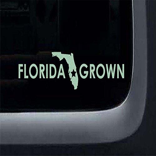 fkleber Florida für Auto Aufkleber gewachsen ()