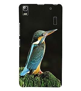 ColourCraft Beautiful Bird Design Back Case Cover for LENOVO K3 NOTE