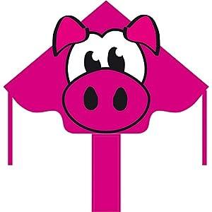 Invento 102154 Ecoline - Cometa (120 cm), diseo de cerdo