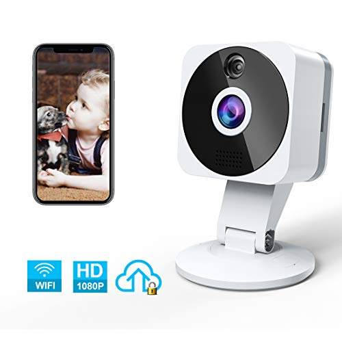 Camara IP WiFi, NIYPS HD 1080P Camara Vigilancia Vision