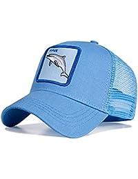 6843b4de76489 Amazon.es  Sombreros y gorras - Accesorios  Ropa  Gorras de béisbol ...