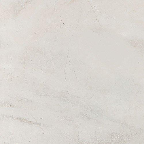 grey-porcelain-glossy-rectified-wall-floor-tiles-bathroom-kitchen-ensuite-585-cm-x-585-cm
