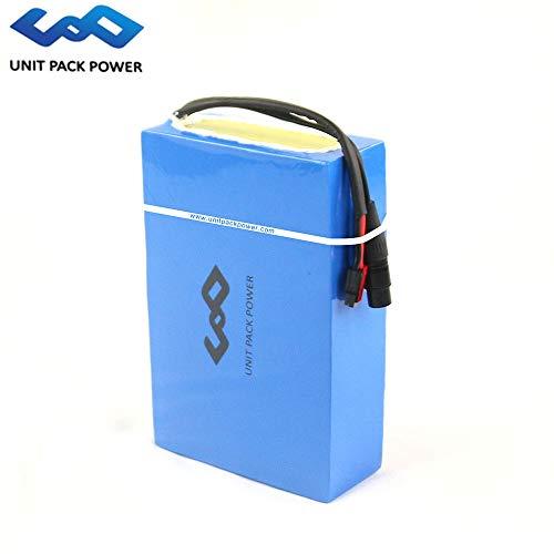 E-Bike-Lithium-Batterie 48V 20AH / 25AH Wasserdichte Batterie mit Ladegerät für 48V 1000W Motor (48V 20AH)